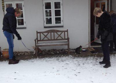 Casper og Mette viser de nye katte rundt
